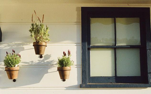 window plans