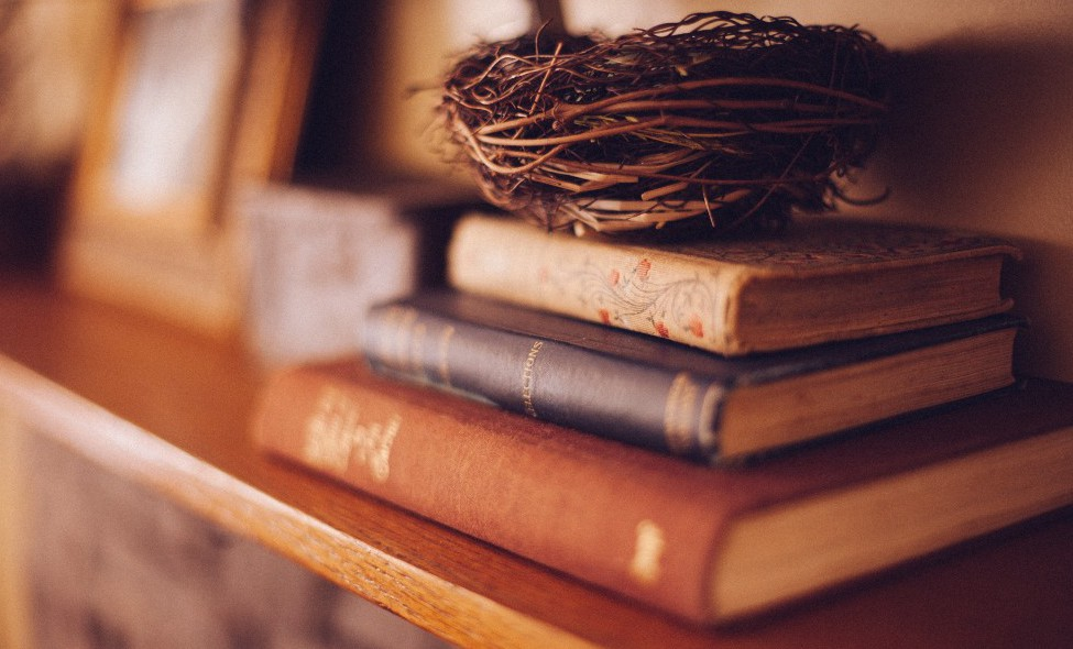 books and nest