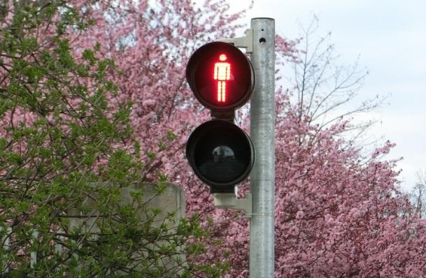 traffic-lights-377524_1280
