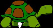 turtle-304426_1280