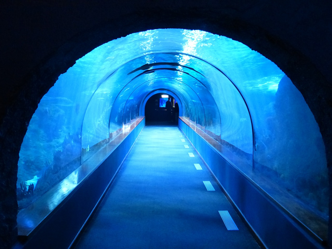 tunnel-452908_1280